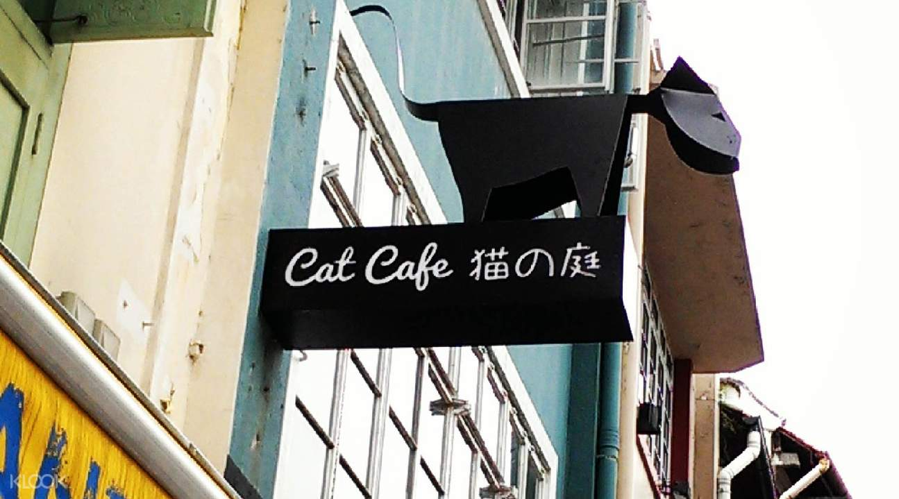 cat cafe neko no niwa entrance