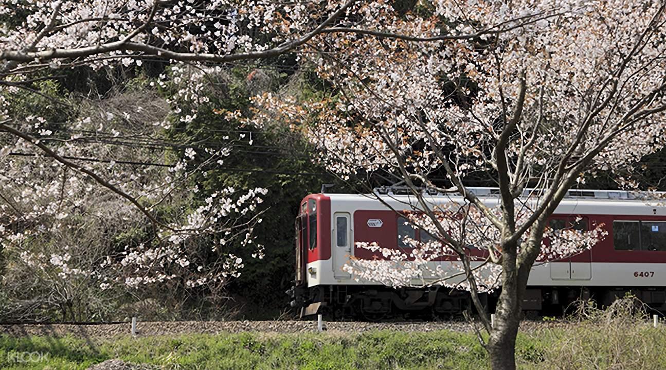 日本关西近铁电车周游券(1日/2日/5日)
