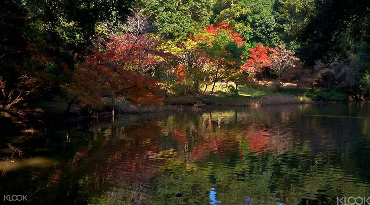 Kumamoto park