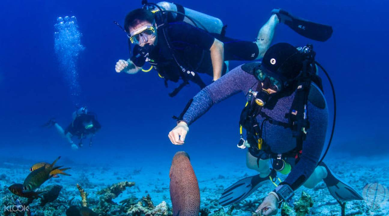 皇帝島岸潛水深探