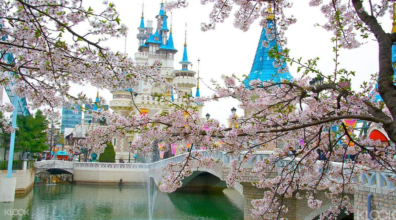 賞櫻玩樂園