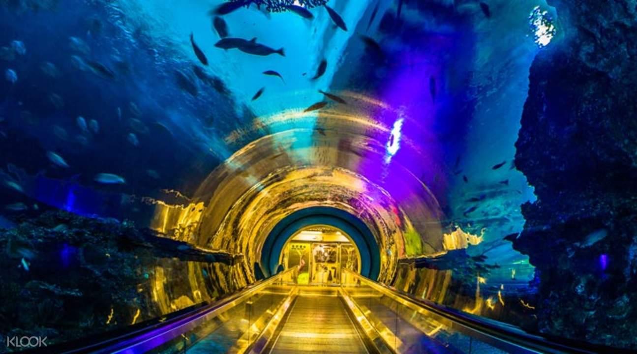 屏東海生館海底隧道