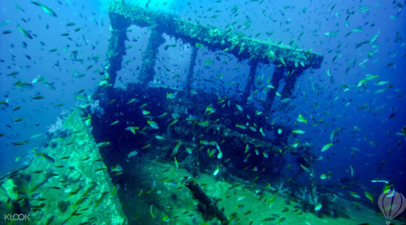 king cruiser wreck