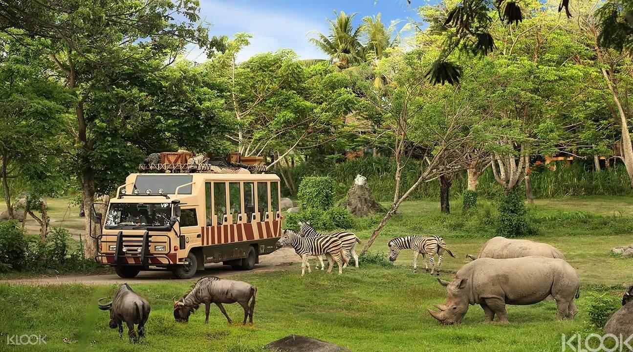 Bali Marine Safari Park