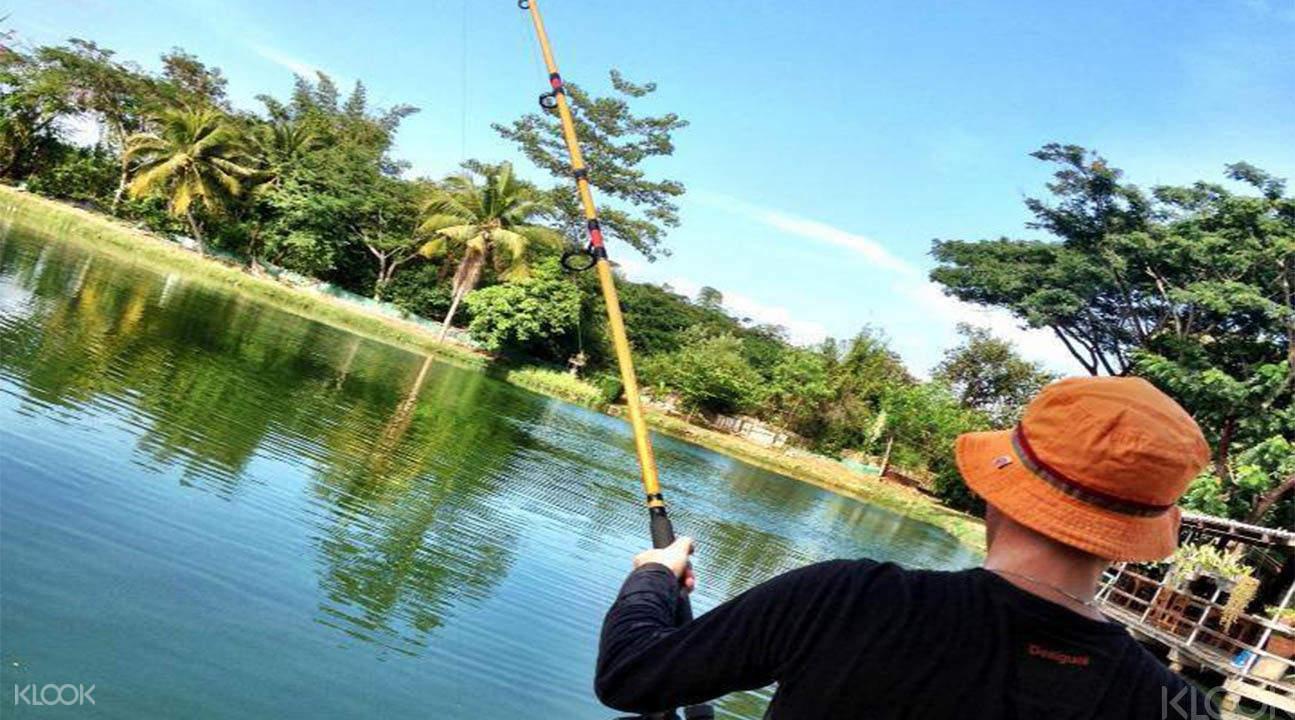 清迈巨型鲶鱼垂钓体验