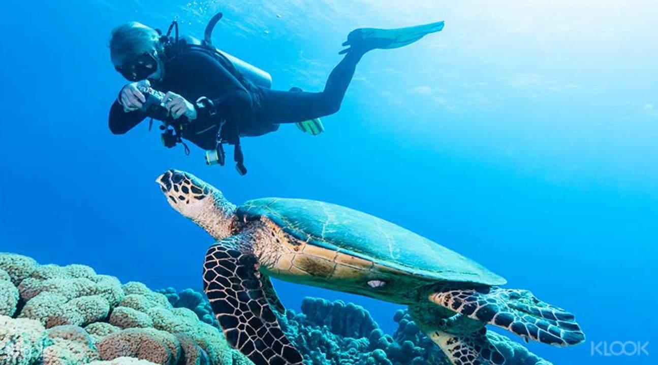 深潛海底世界