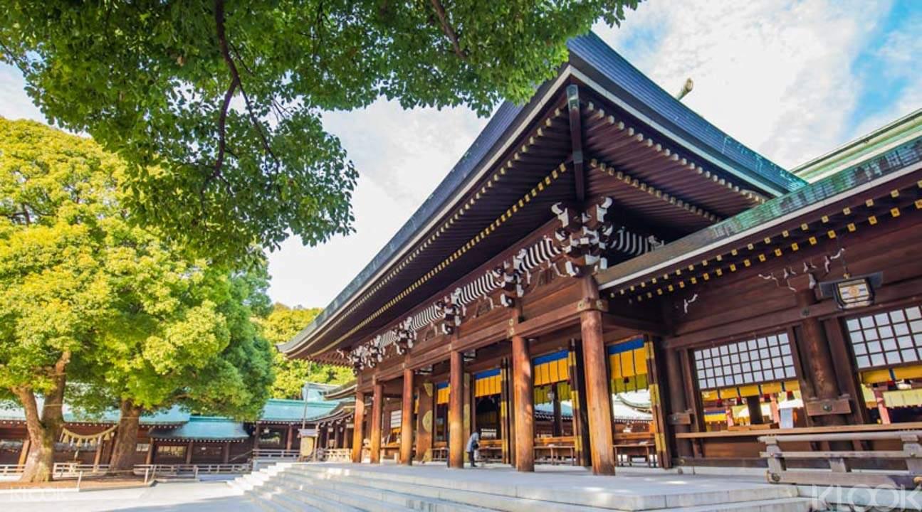 Meji Shrine during tokyo morning tour