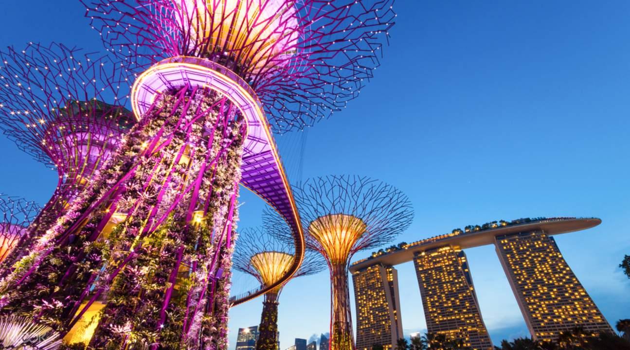 新加坡夜游