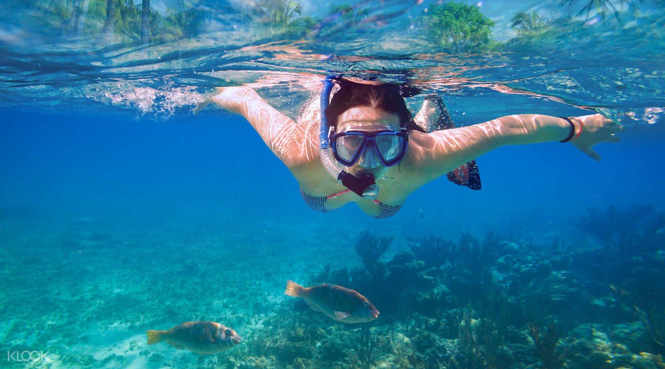 澎湖专业浮潜体验