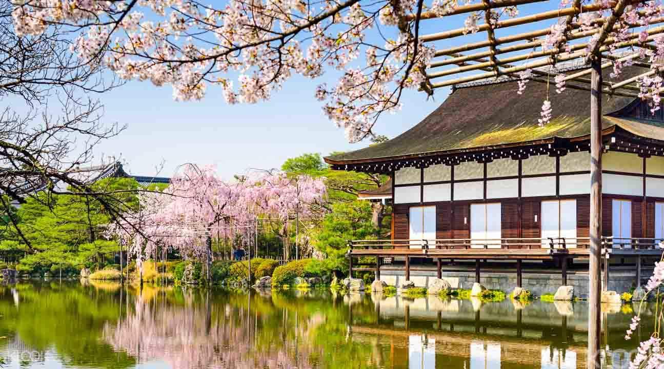 tour of Kyoto from Osaka