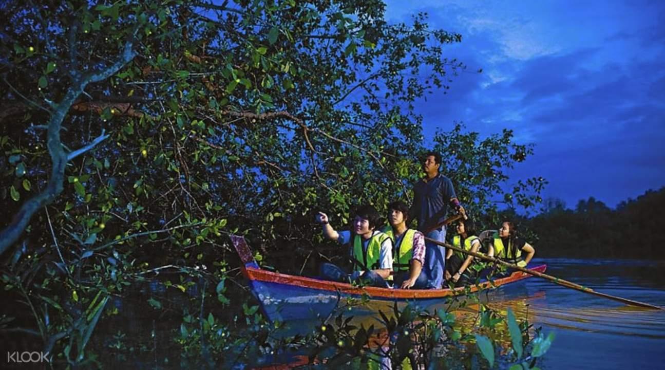 Kuala Selangor firefly cruise