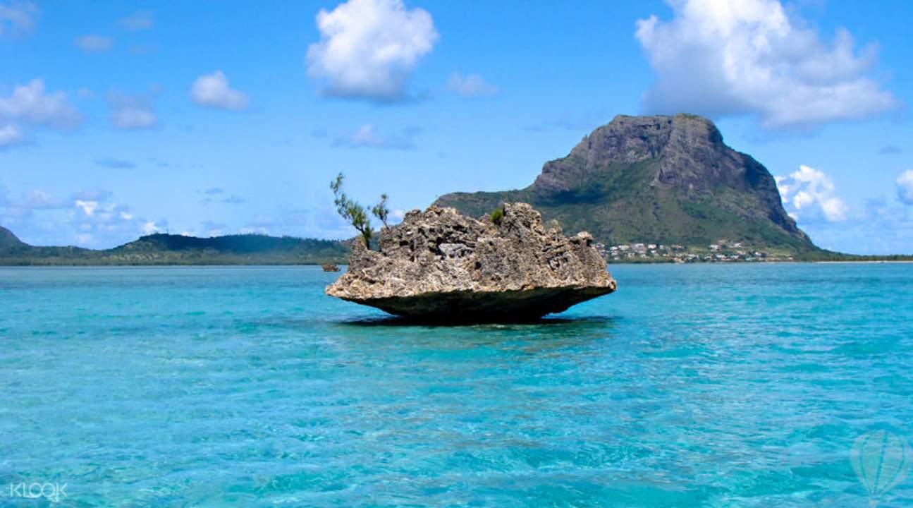快艇看海豚+月亮島