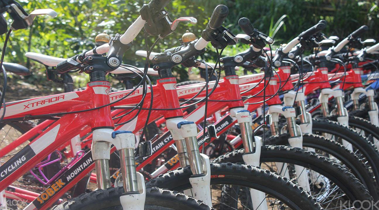 biking tours bali