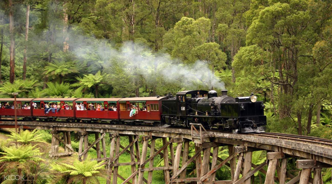 Puffing Billy Steam Train tour