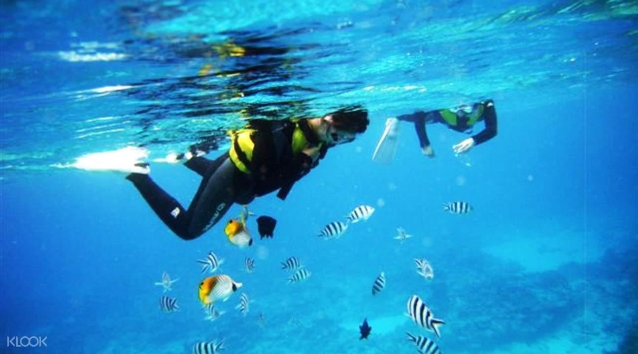 沖繩 潜水