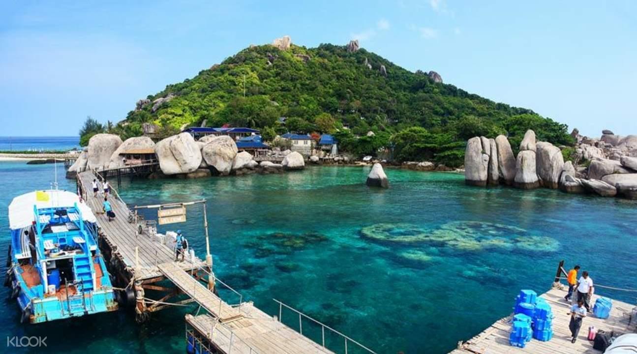 涛岛和南悠岛浮潜