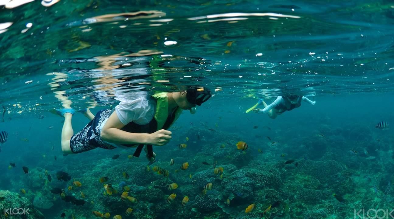 浮潛探索海洋