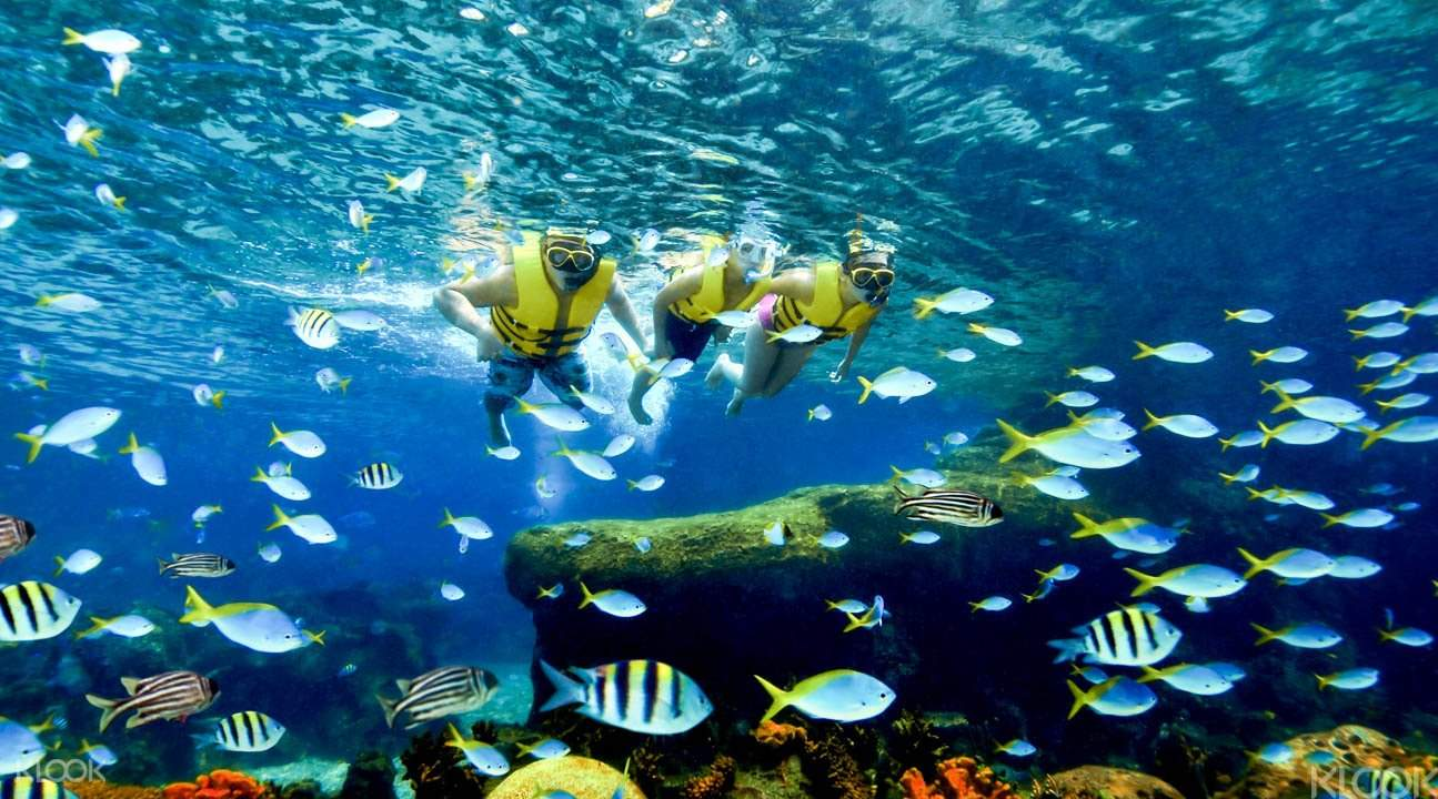 水上探險樂園 浮潛