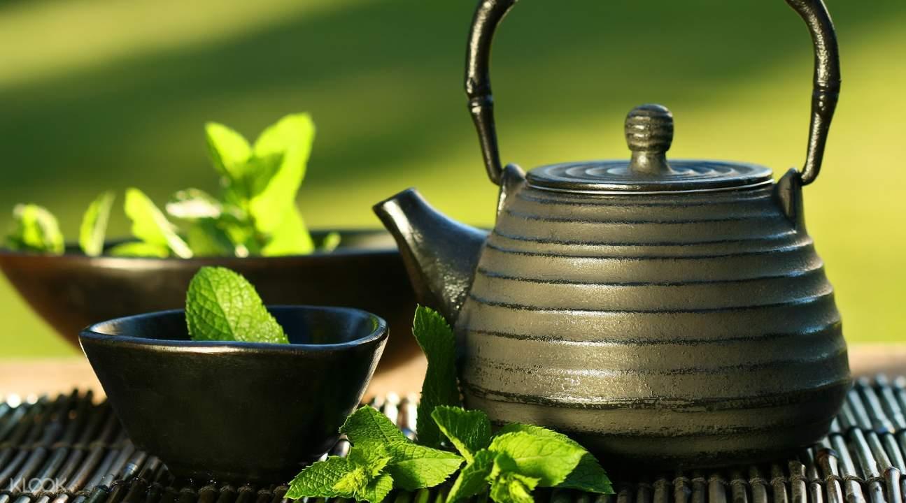 Yame green tea tasting Yanagawa