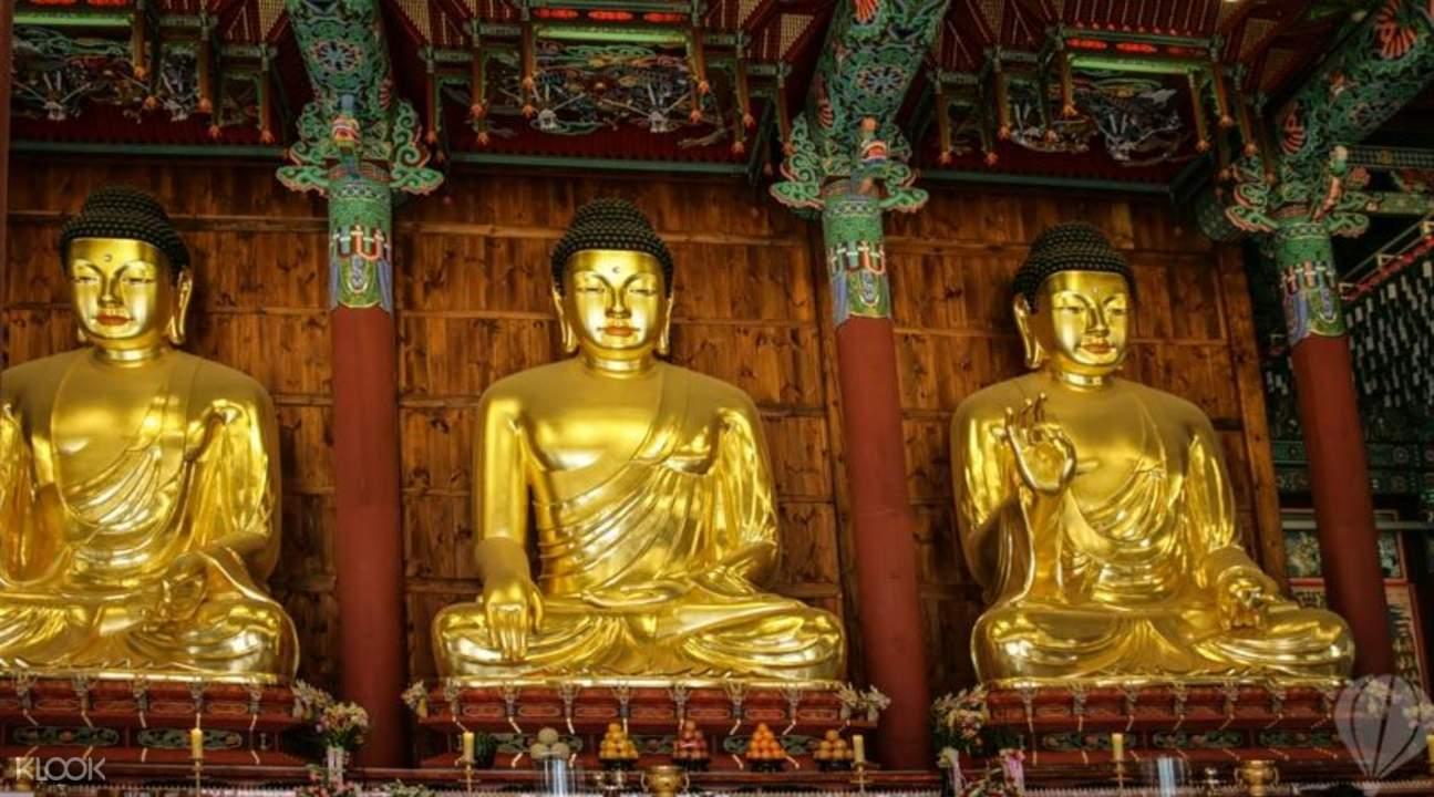 ogyesa Buddhas