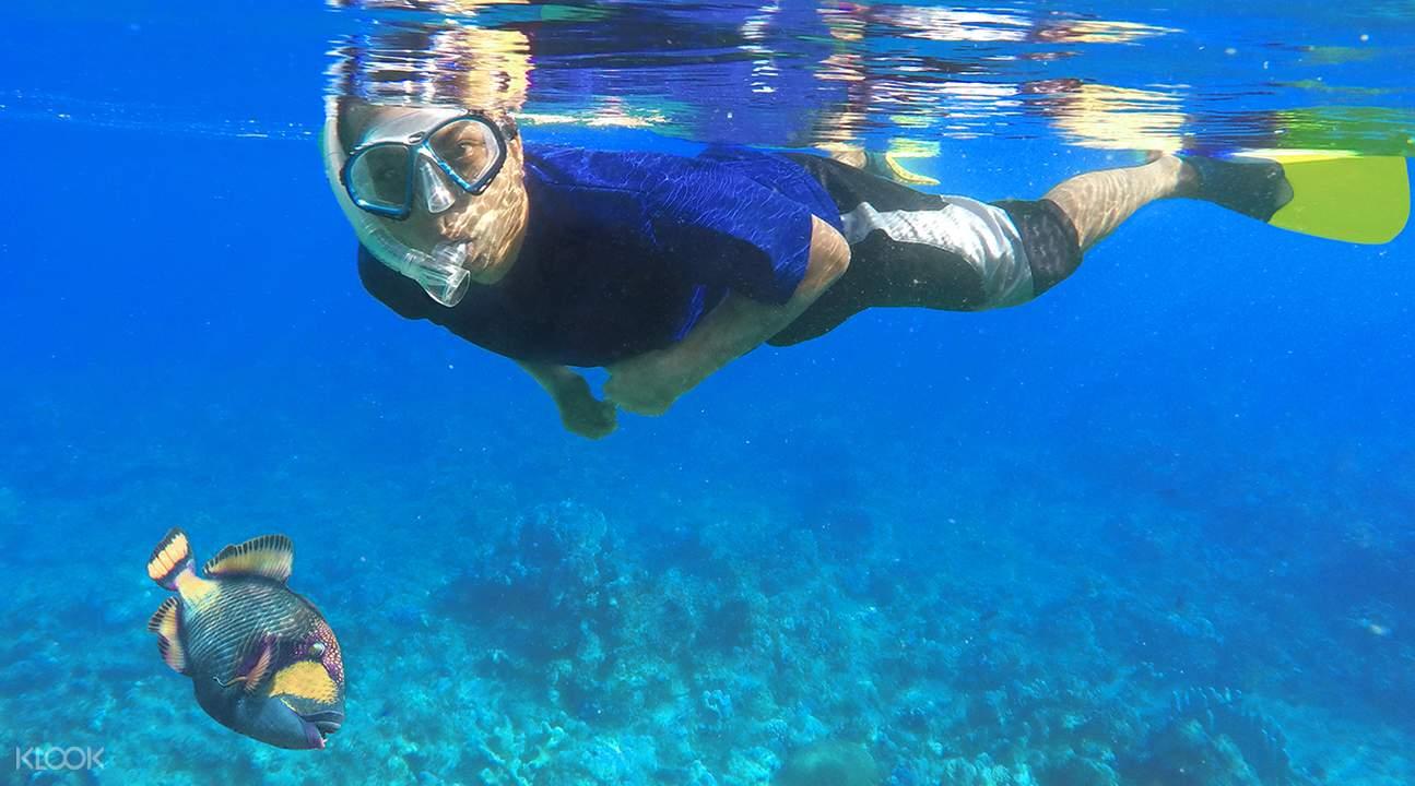 浮潜探索海洋