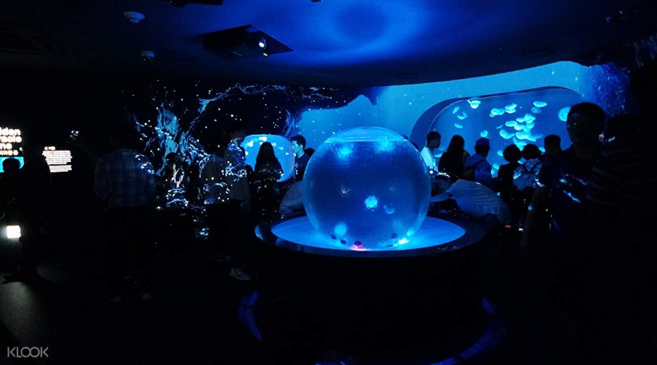 韓華Aqua Planet 63海洋世界