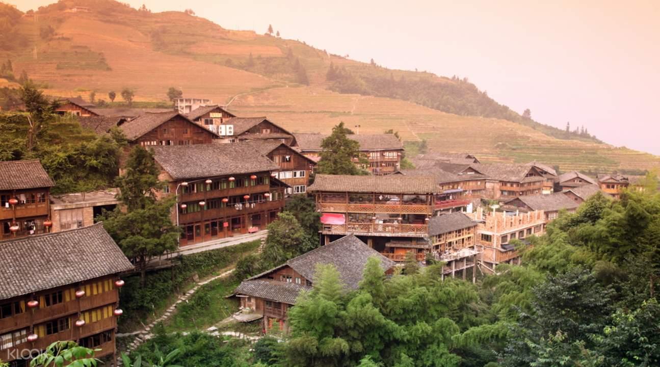 Guilin Tea Plantation Tour