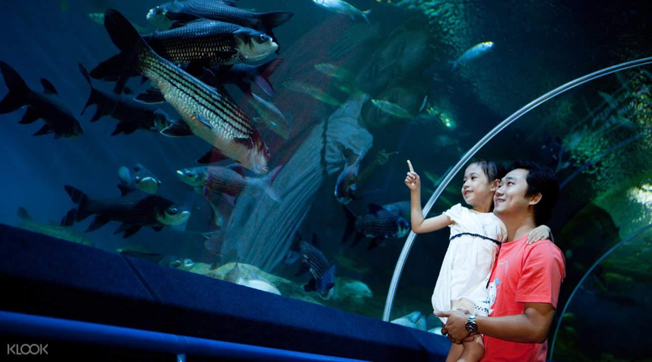 Океанариум «Подводный мир» в Паттайе