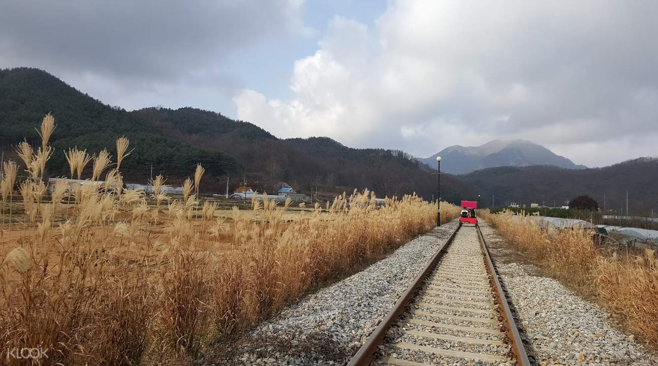 gangchon rail park ticket