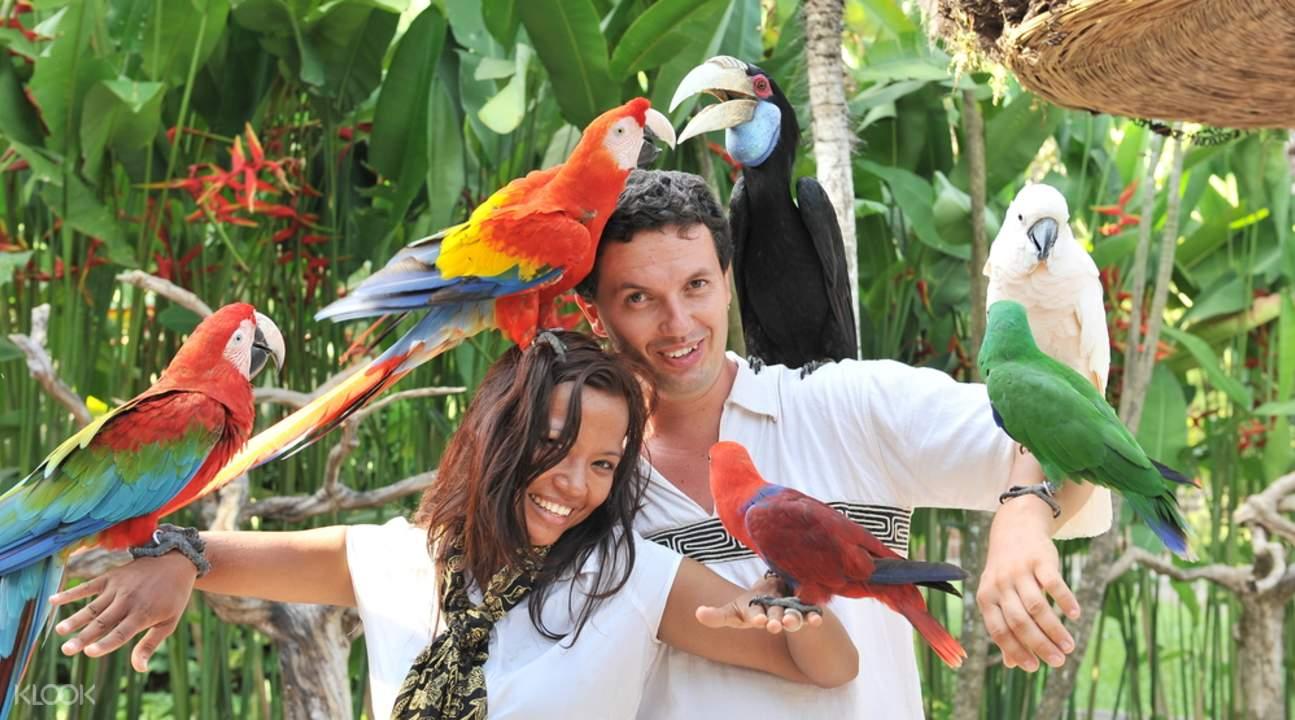 Bali Zoo tours