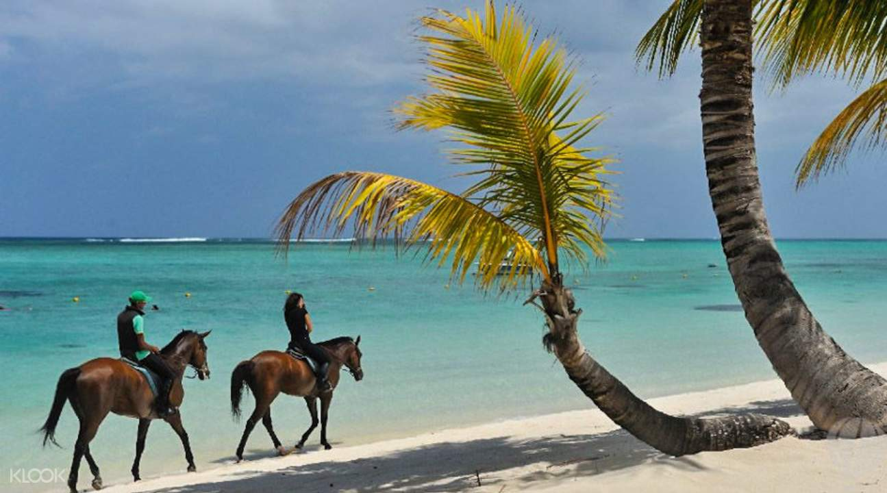 horse riding in maurtitius le morne