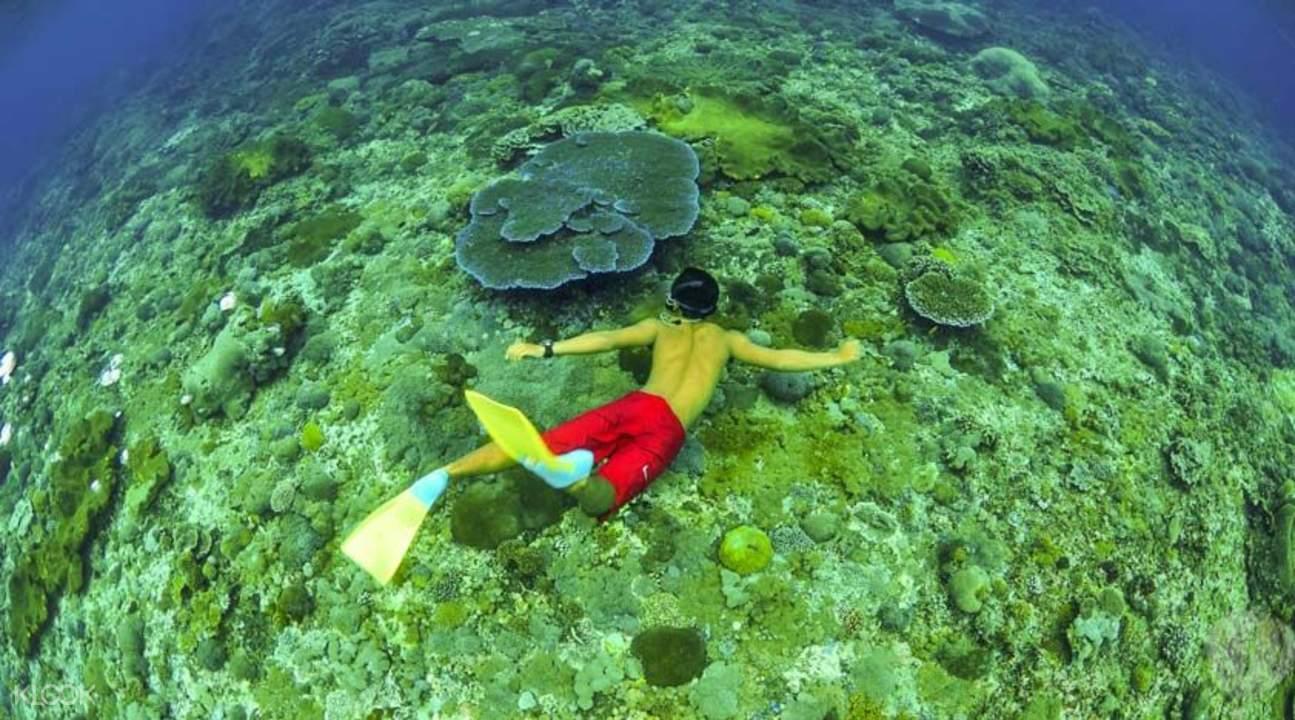 Lembongan island cruise