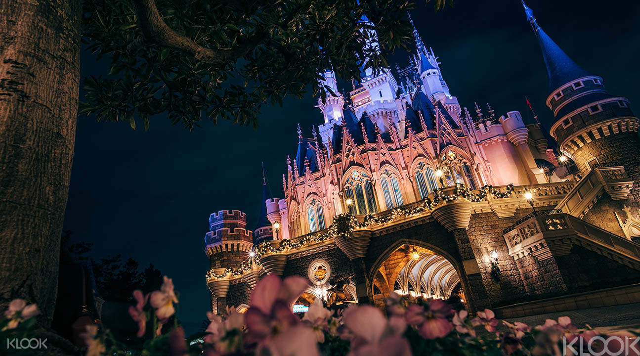 Cinderella Castle by night