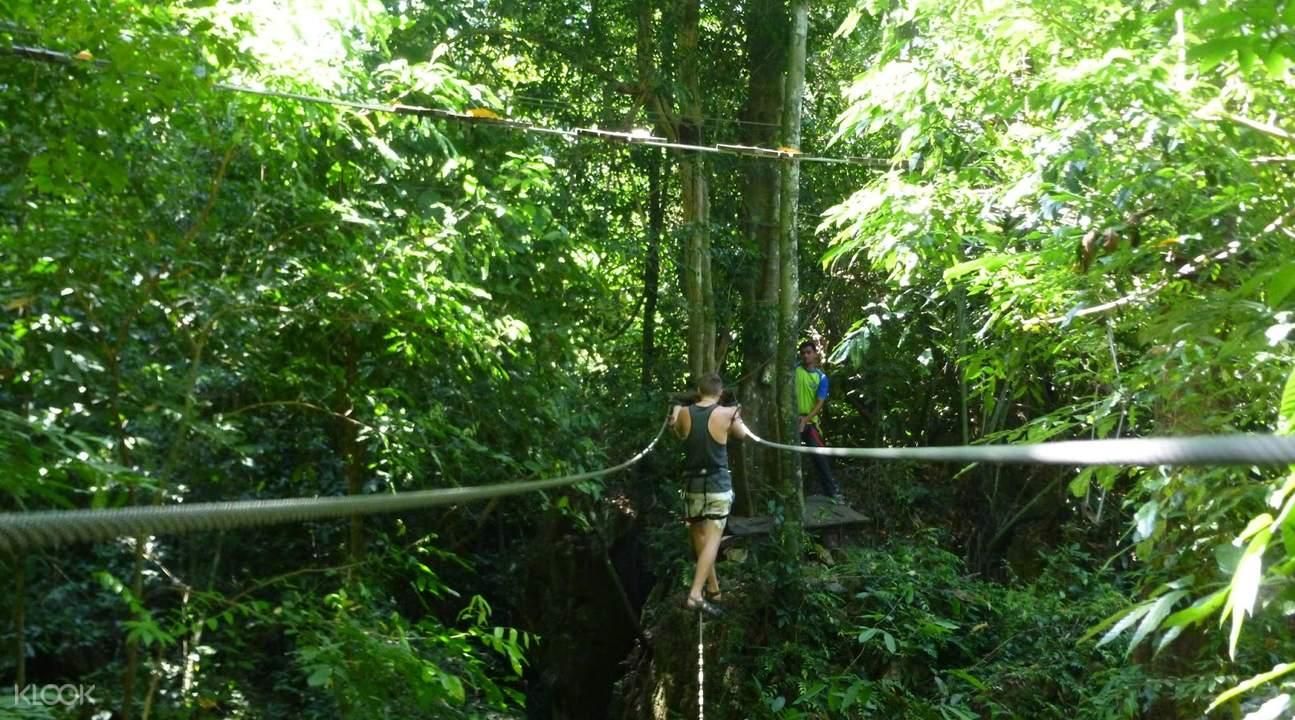 樹頂冒險公園