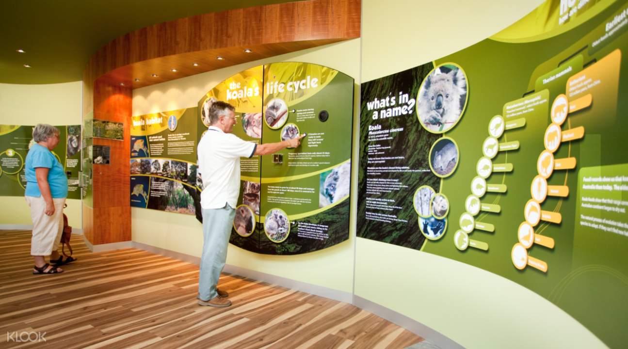 Koala Conservation Centre