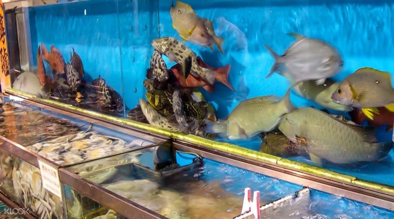 西贡观光船生态之旅