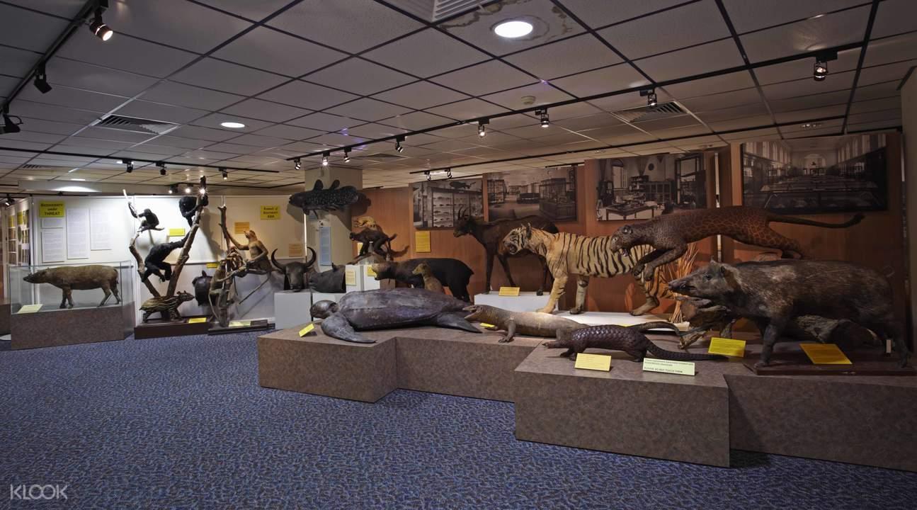 李光前自然歷史博物館