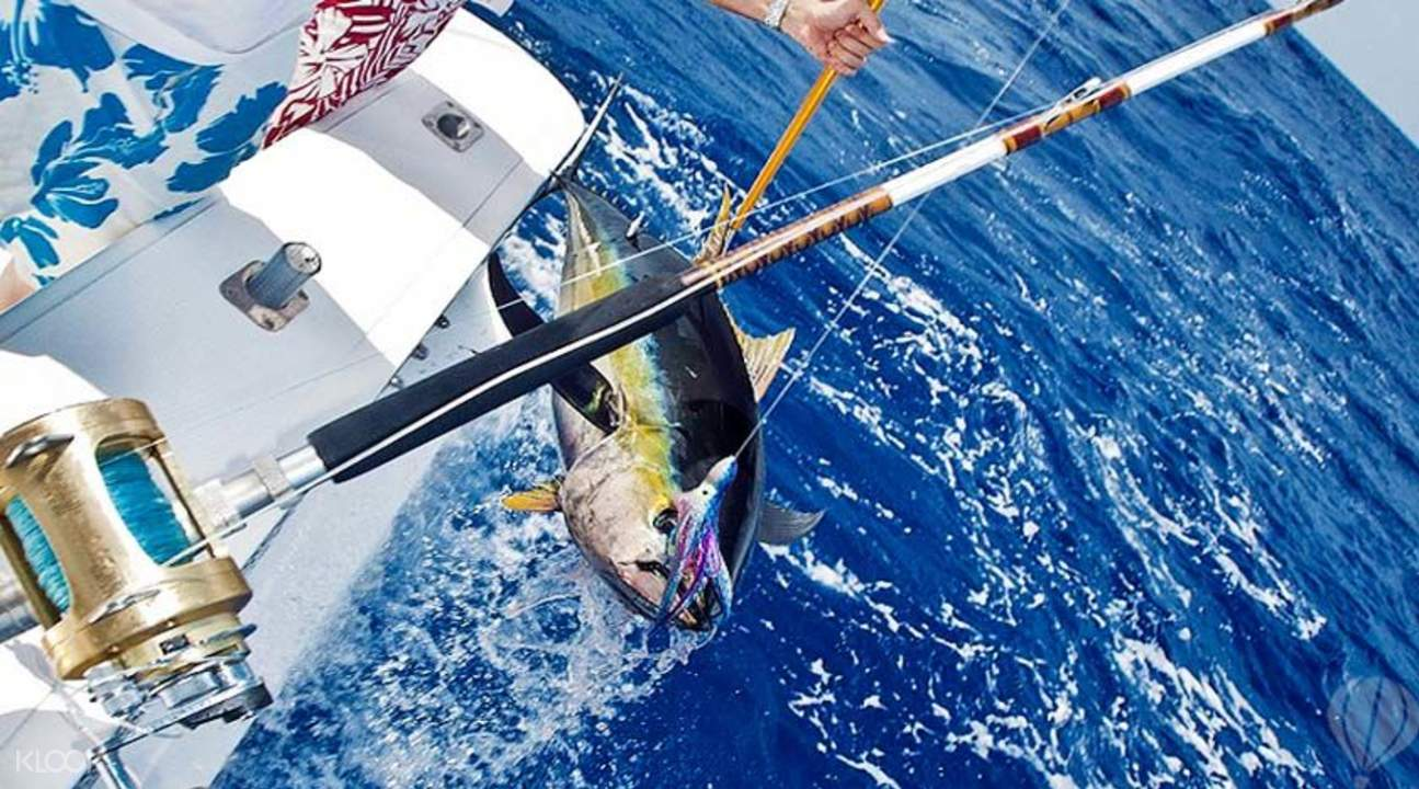 Have fun in Mauritius fishing