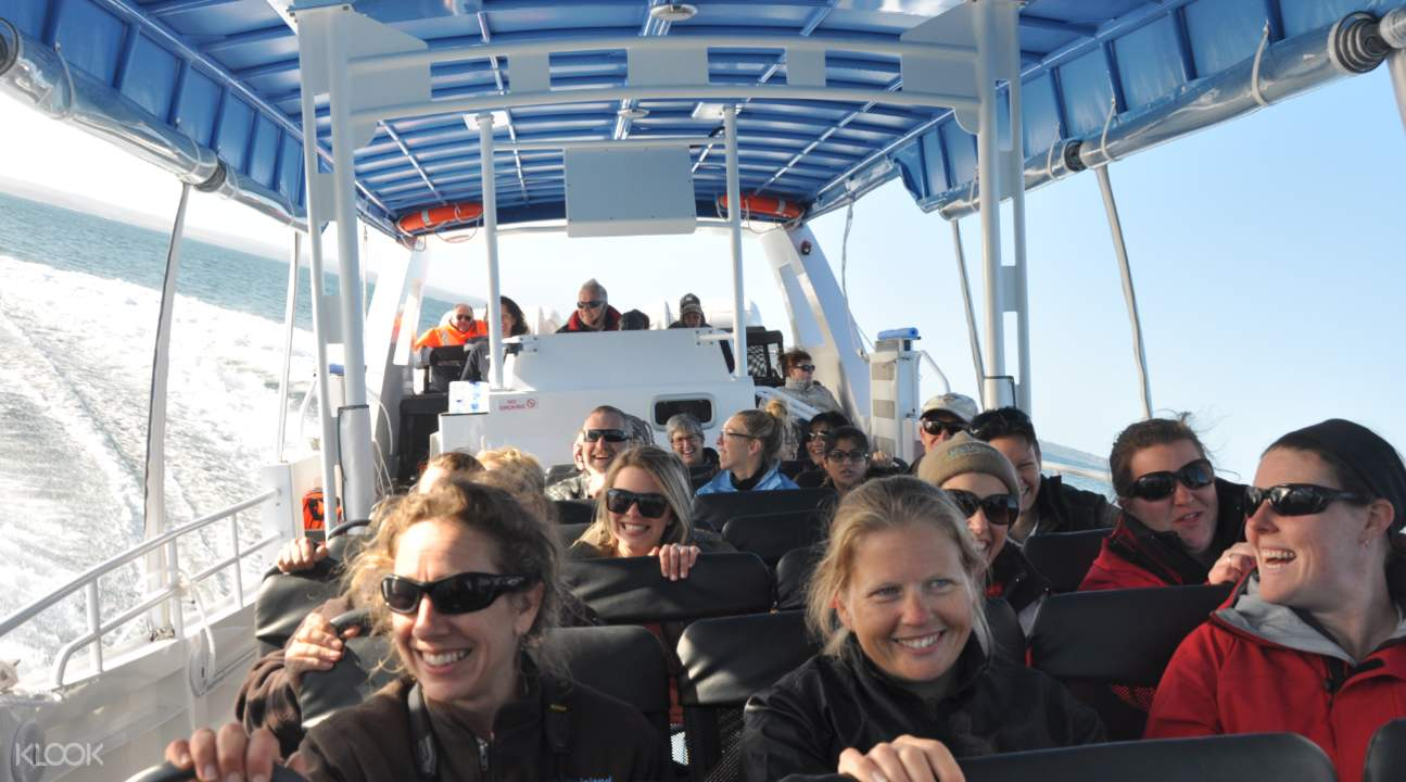 express ecoboat tour
