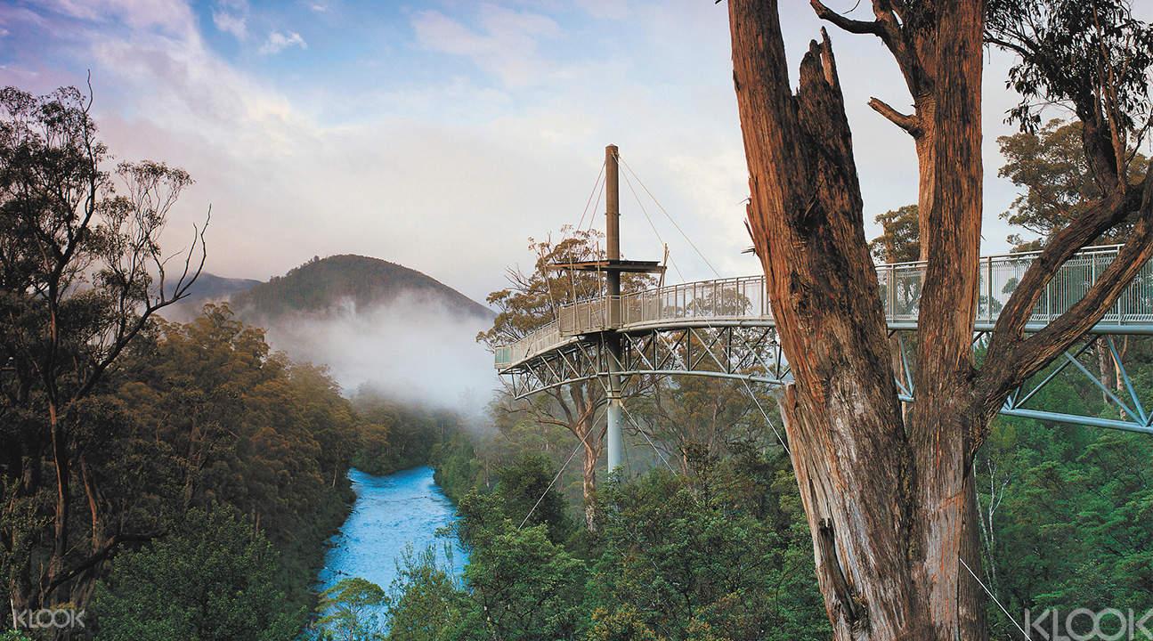 iVenture Tasmania Tourist Pass