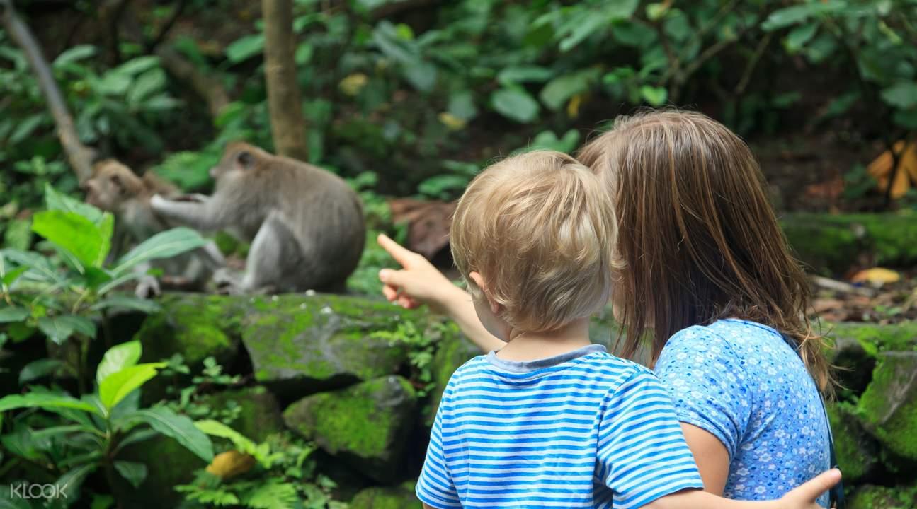巴厘岛动物园