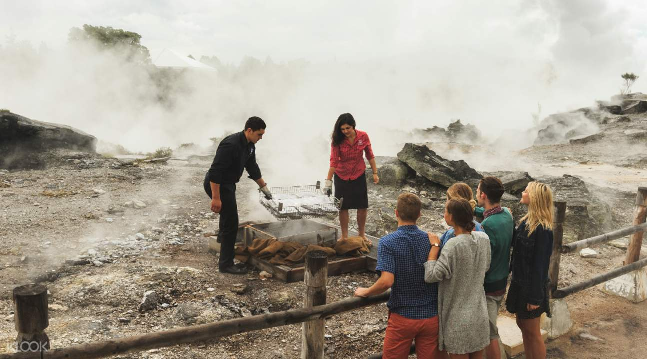 Guided tour at Te Puia
