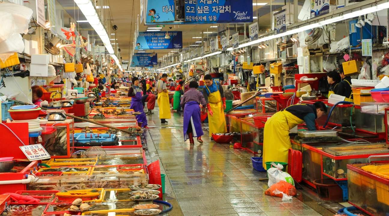 south korea busan day tour