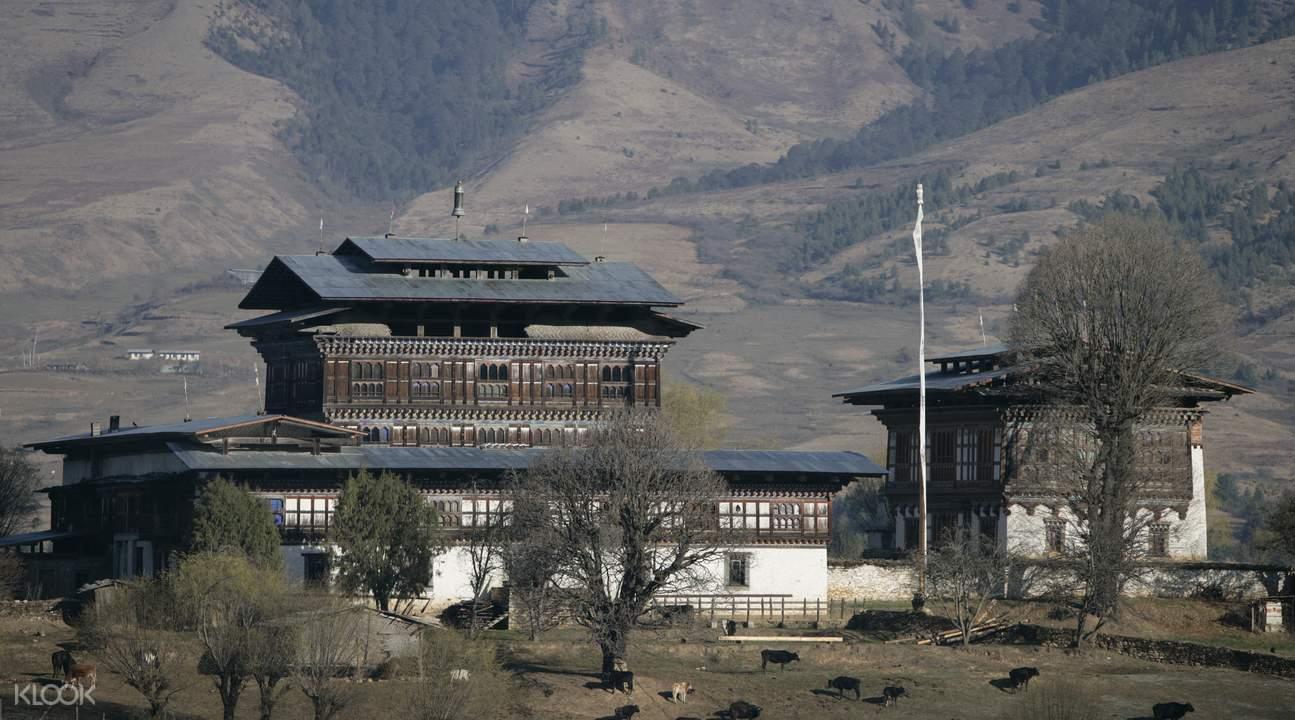 6天5夜 不丹文化苦旅