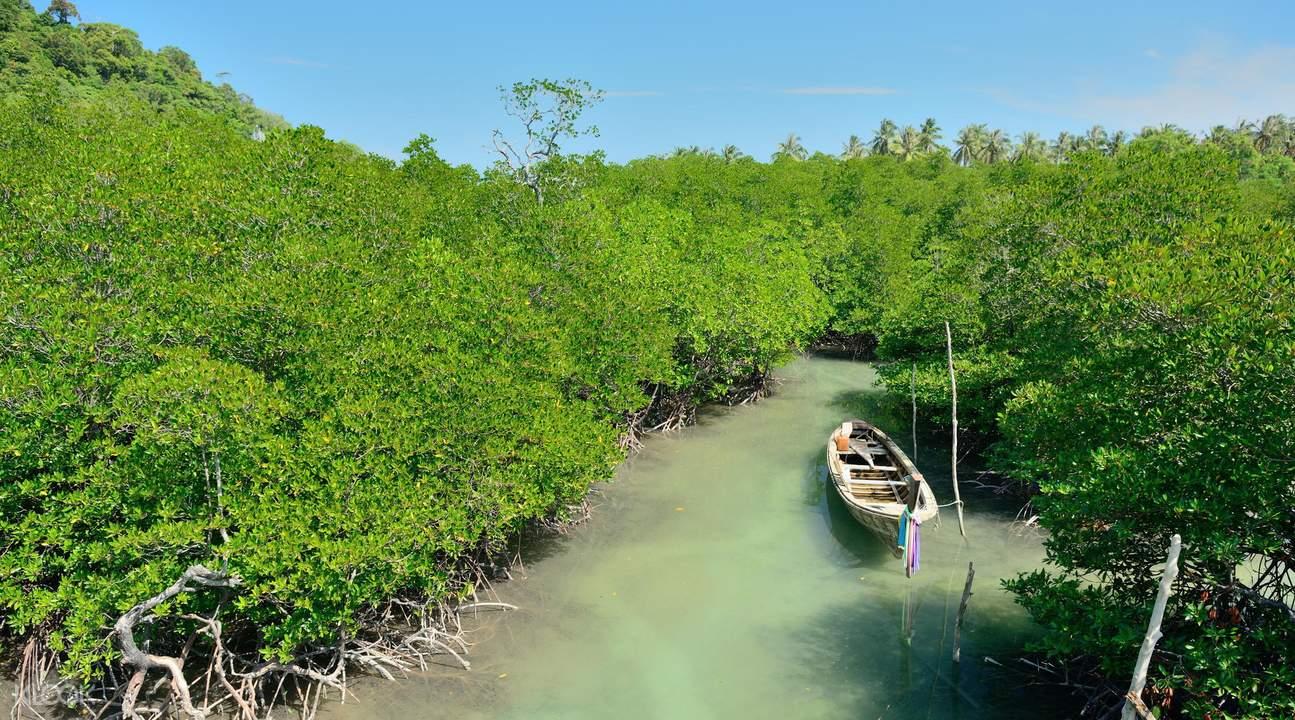喀比塔蘭紅樹林