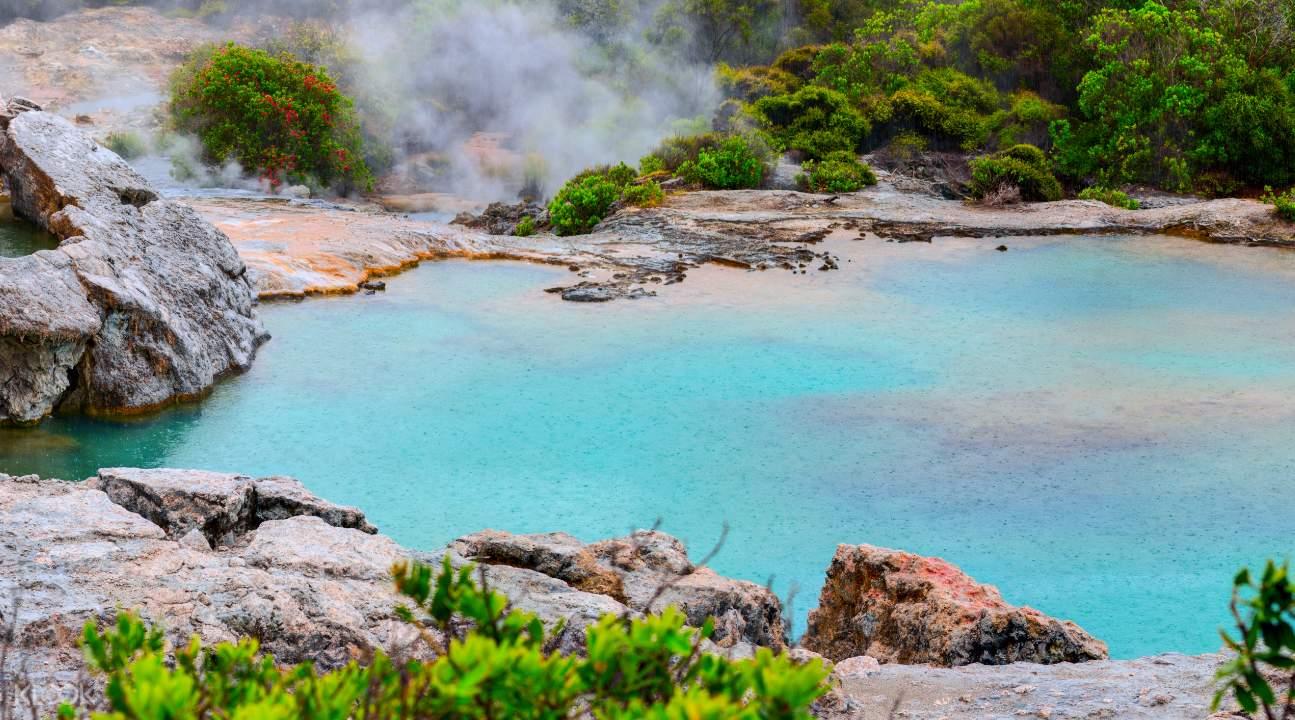 Geothermal valley at Te Puia