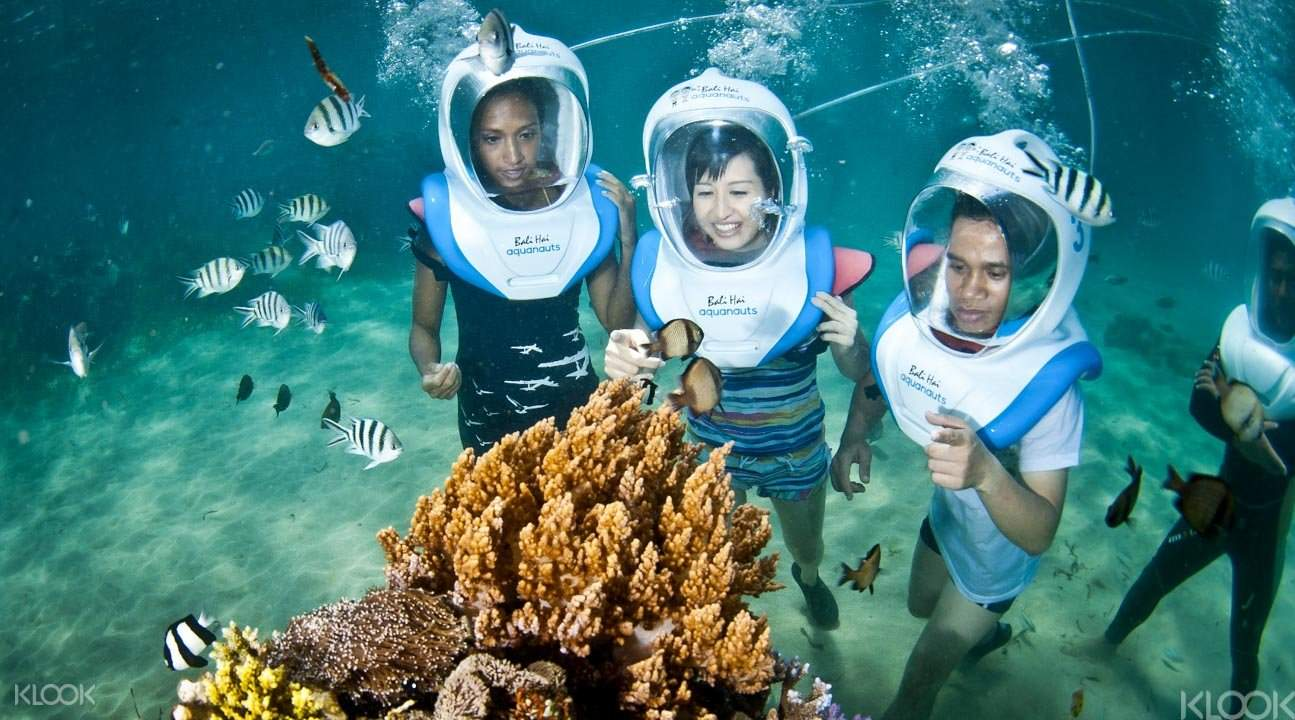 巴厘蓝梦岛一天游玩2