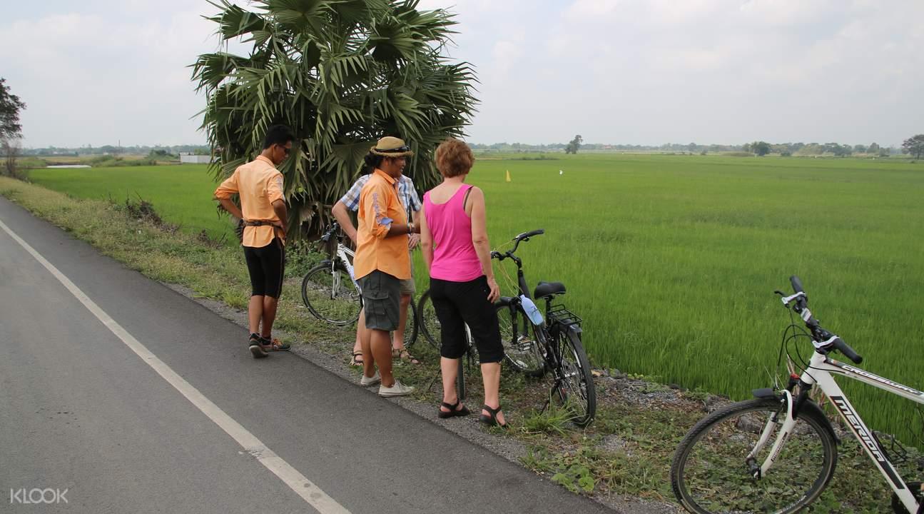ayutthaya guided tour