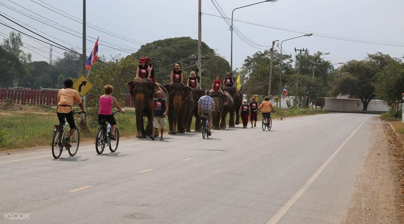 ayutthaya biking tour