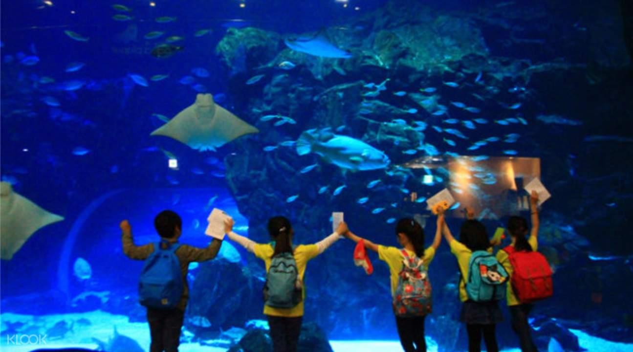 aquarium seoul